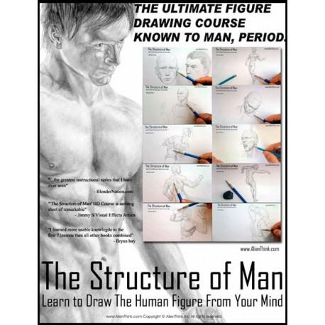 آموزش نقاشی ساختار بدن انسان - دوره آموزش حرفه ای نقاشی فیگور و آناتومی مخصوص هنرمندان