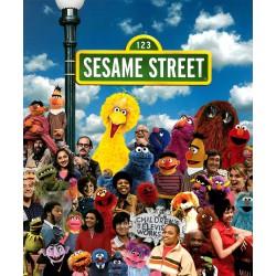 آموزش زبان Sesame English